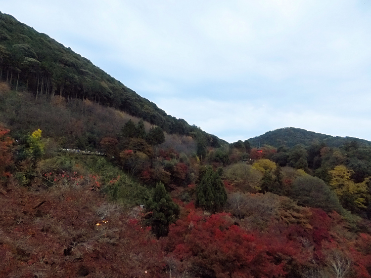 Overview of fall foliage in the mountains.