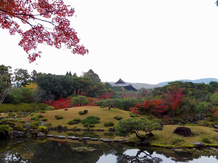 A landscape view of Isuien Garden adorned with splashes of red and yellow leaves in autumn.