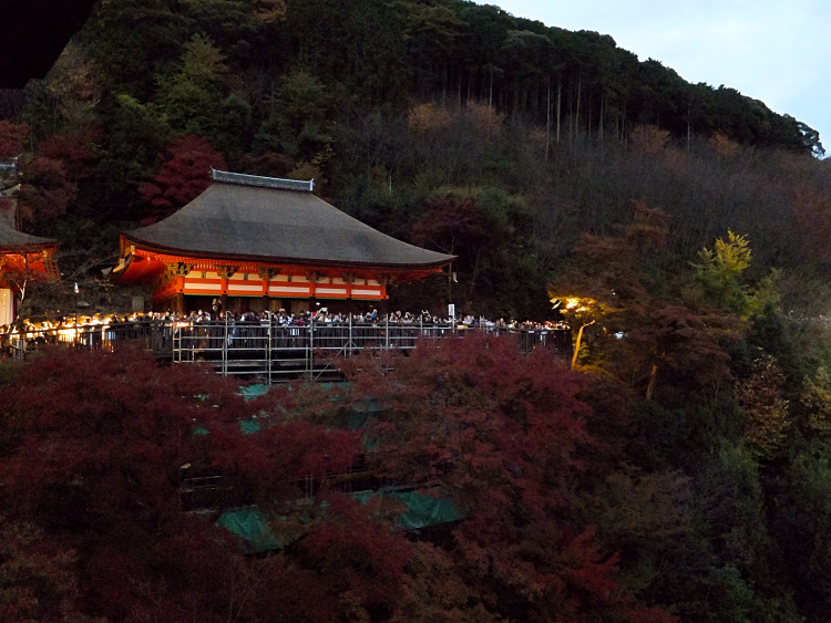 Kiyomizudera surrounded by autumn foliage in the evening.