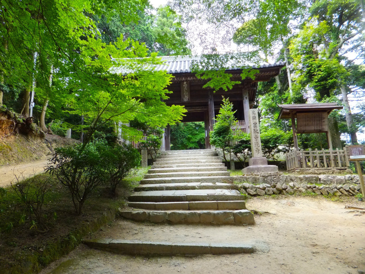 Battered stone steps leading up to a traditional Japanese-style gate in the forest.