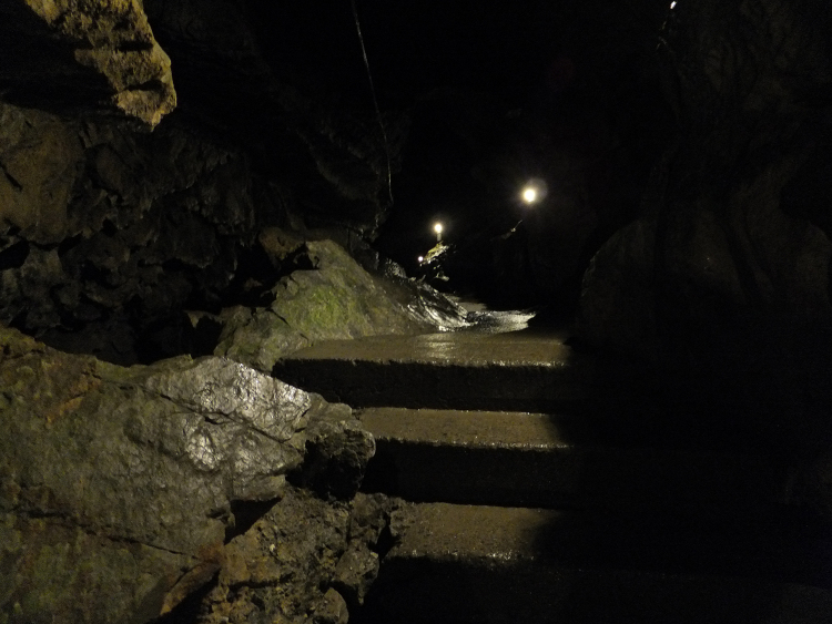 Dimly lit tunnel revealing a small flight of stairs.
