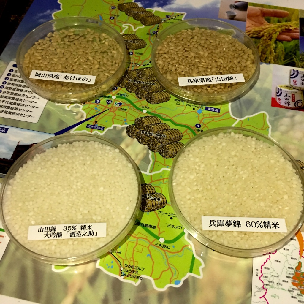 4 rice grain samples.